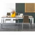 Connubia Calligaris Baron stół rozkładany z szkła i ceramiki dł130/190