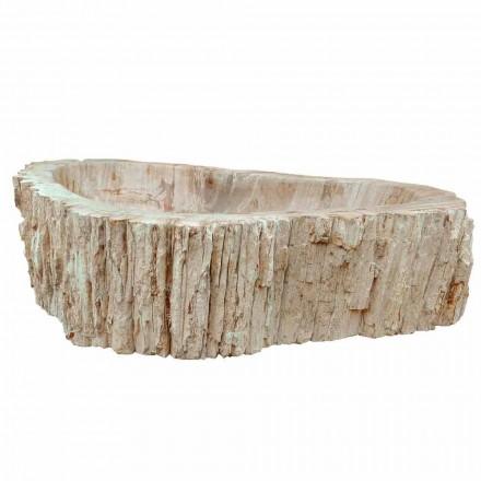 Umywalka jednego kawałka drewna kopalnych Goa