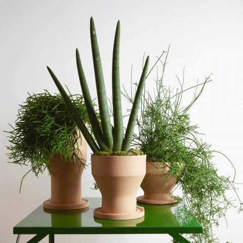 Dekoracyjny wazon na kwiaty ze spodkiem z terakoty Made in Italy - Lorna
